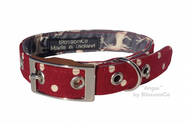 Angus Christmas Dog Collar
