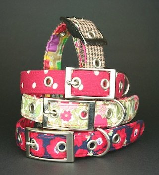 blossomco collars and leads shortlist for gift of the year award