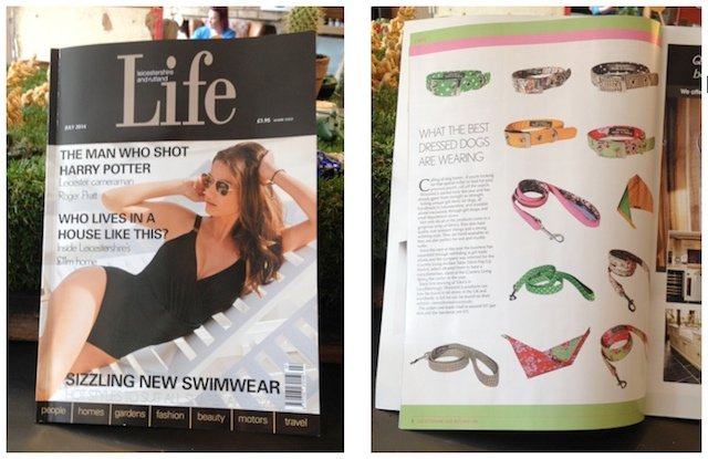 BlossomCo article in Leicestershire Life Magazine