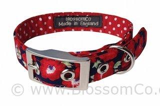 Elizabeth Dog Collar
